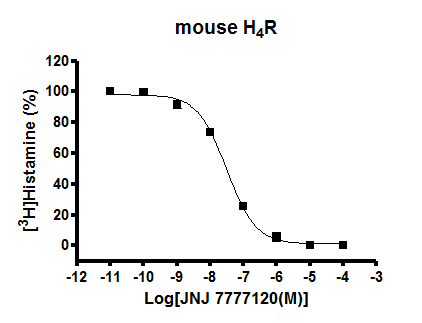 mouse H4R binding